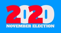 2020 november election logo