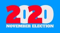 2020 november election logo